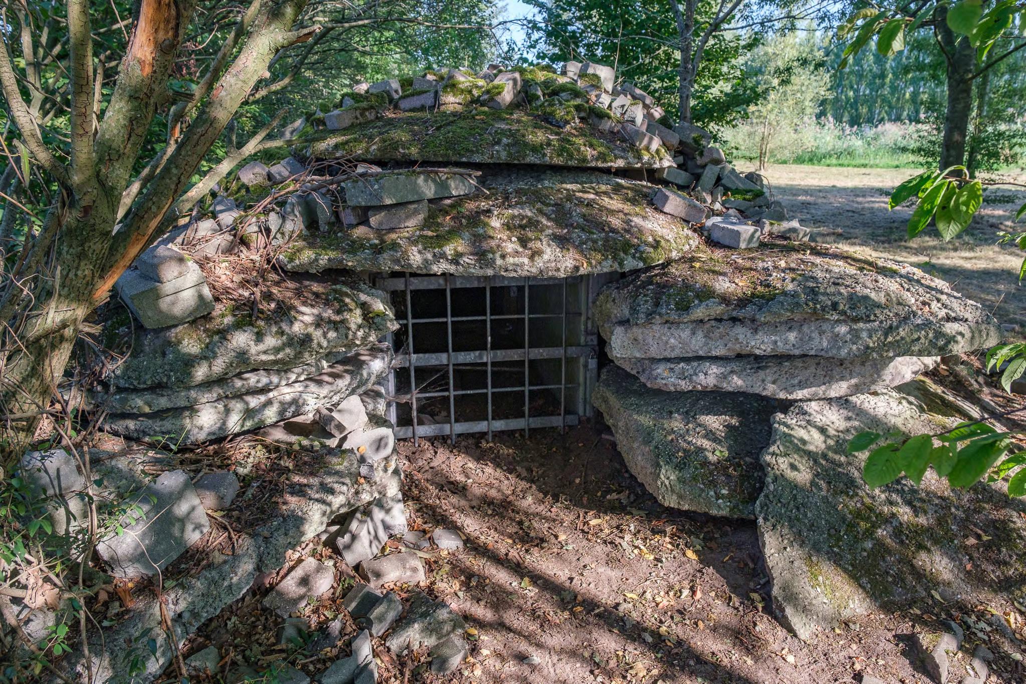 Vleermuizenwal / Bat Cave, Krijn Giezen (1998)
